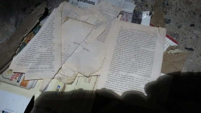 ripped, torn and eaten book and magazine pages