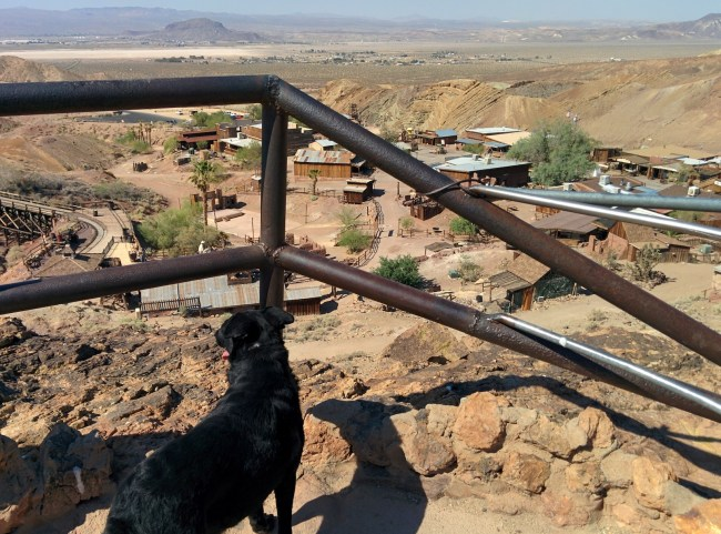 Calico Ghost Town08