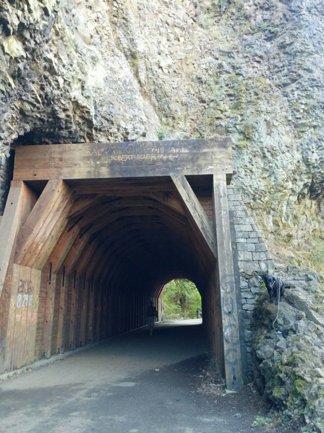 Oneonta Tunnel