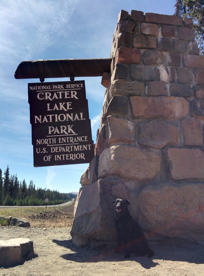 Willow sitting in front of the Crater Lake National Park North Entrance sign
