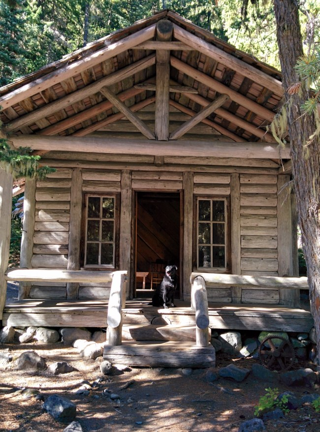 Willow sitting on the front porch of An Old Ranger's Cabin In The Campground Open For public Viewing