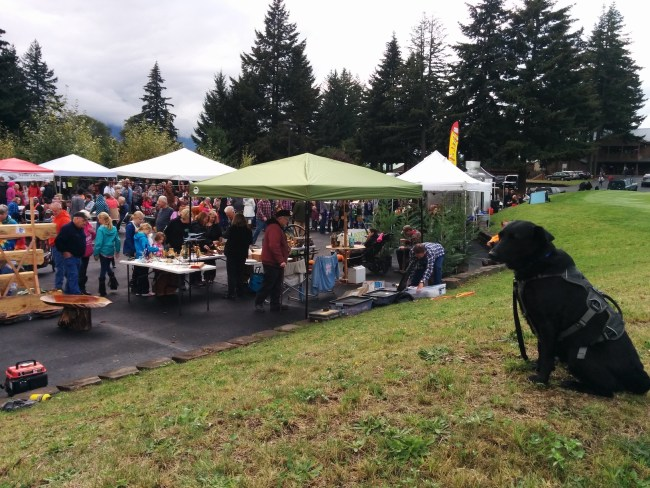 A Bunch of pop up canopys and the crowds enjoying Logtoberfest