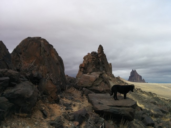 Another shot of Willow standing on a rock with Ship Rock in the background