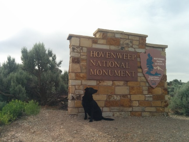 Willow sitting in front of the Hovenweep National Monument entrance sign