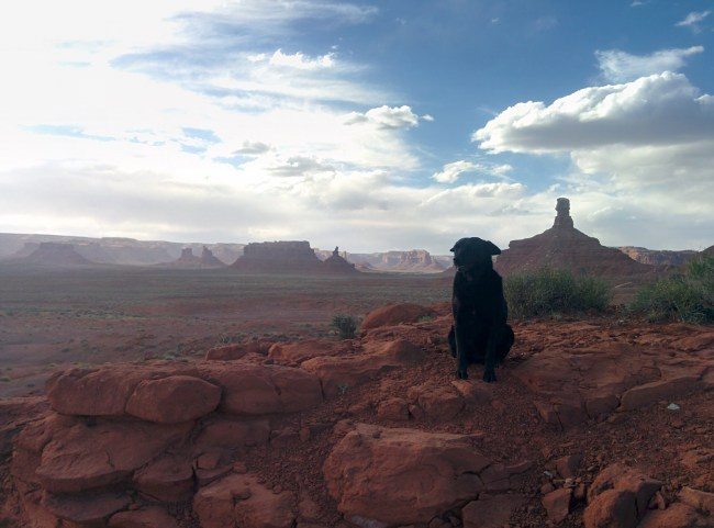 Willow sitting with valley of the gods utah behind her