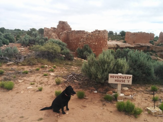 Willow sitting in front of the Hovenweep House