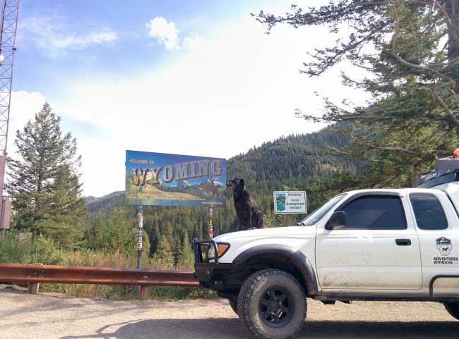 Willow sitting on the hood of the Tacoma next to the Welcome to Wyoming sign at the border of Idaho and Wyoming