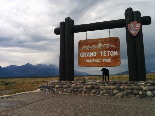 Willow at one of the Grand Teton National Park entrance signs
