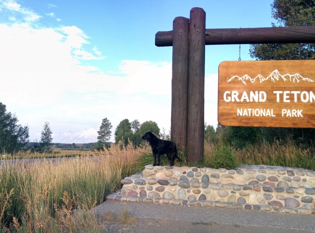 Willow at a Grand Teton National Park entrance sign with forest fire Smoke Obscuring The Tetons in the background