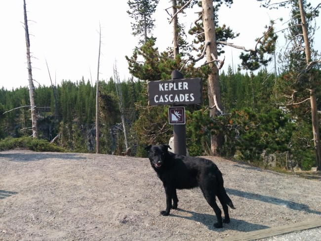 Willow in front of the Kepler Cascades sign