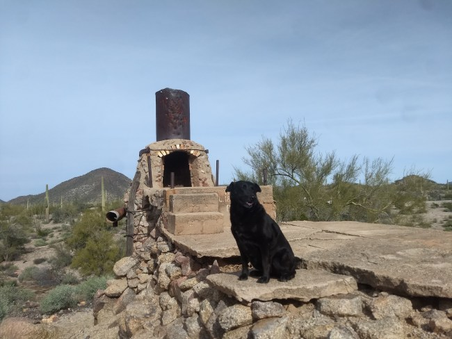 Willow sitting atop the remains of an old copper ore smelter