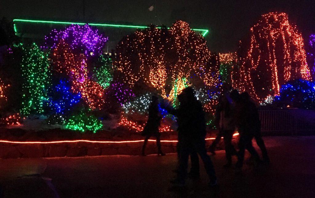 Zoo Lights Utah