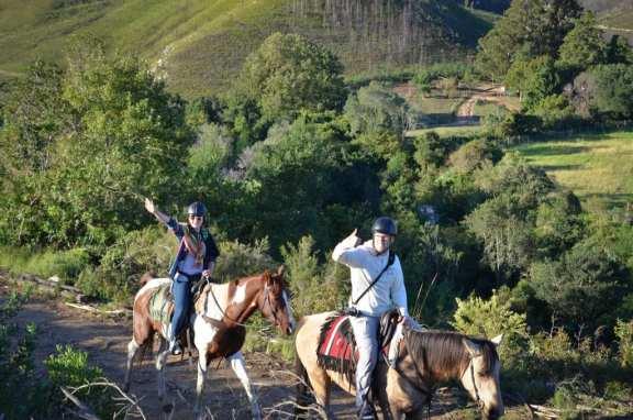 Horseback Riding in Swellendam