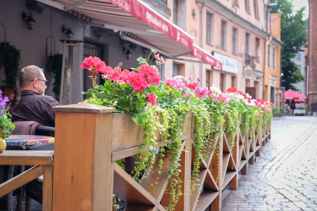 A street side cafe in Riga. The wooden barrier from the street is topped with pink flowers with flowing green leaves.