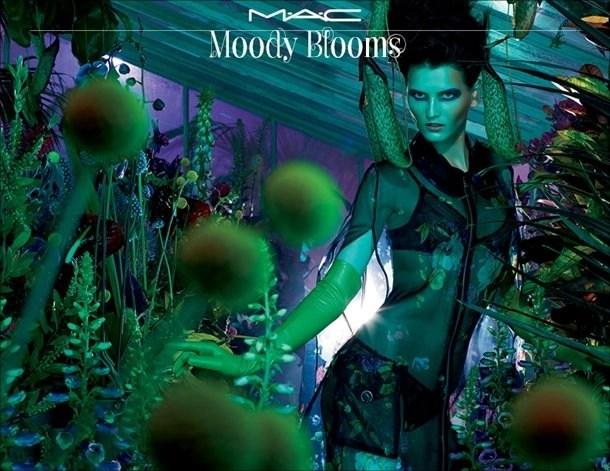 mac moody bloosm posters