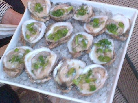 greek style oysters