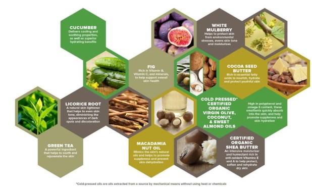 natural and organic ingredients in sustainable youth products
