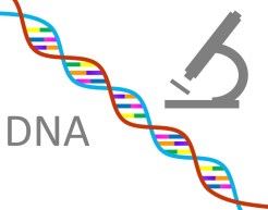 words dna with strand of dna