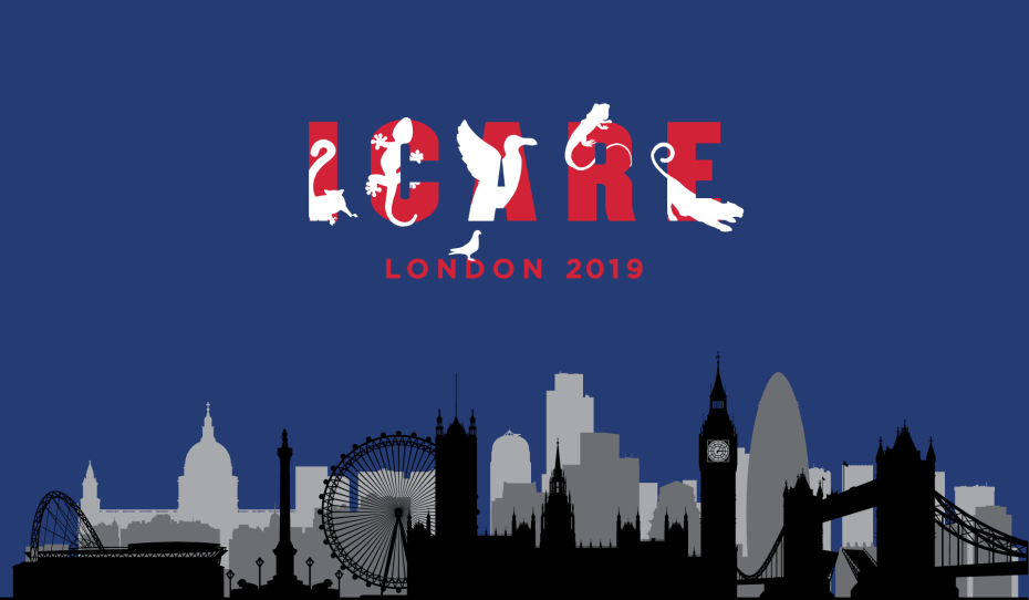 Verslag ICARE Londen 2019