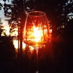 'Wine is sunlight held together by water' ~Galileo