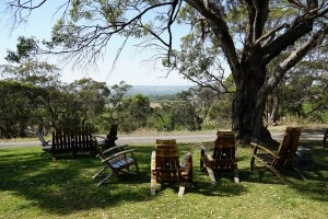 Mclaren Vale Australia wine