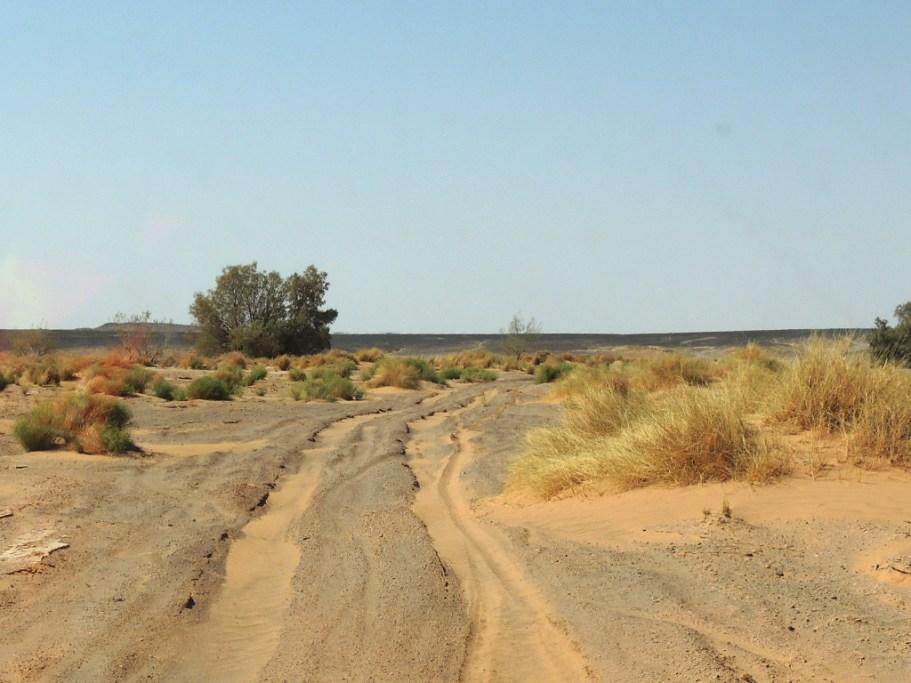 Ríos de arena