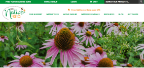 Learn more about Direct Native Plants.