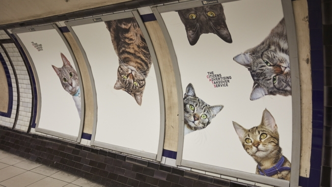 print-metropolitana-londra-cats-not-ads