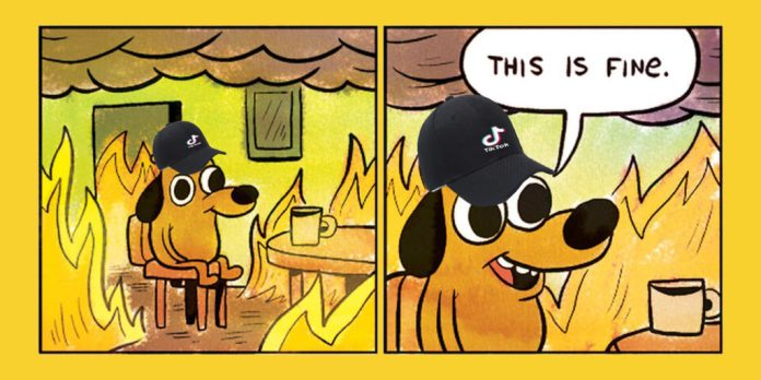 dog in the this is fine meme with a tiktok hat on