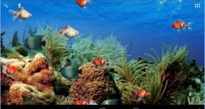 Aplikasi Wallpaper Aquarium