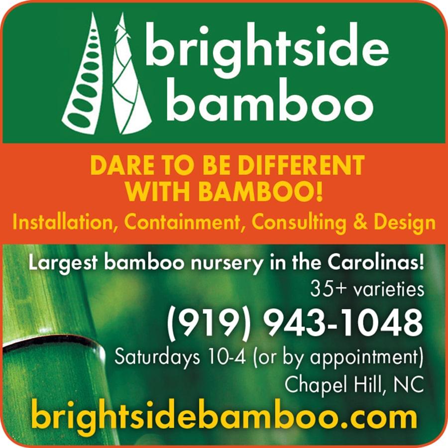 Brightside Bamboo Print Ad