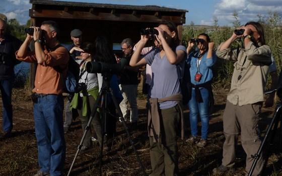 II Curso gratuito de iniciación a la ornitología para periodistas socios de AECC