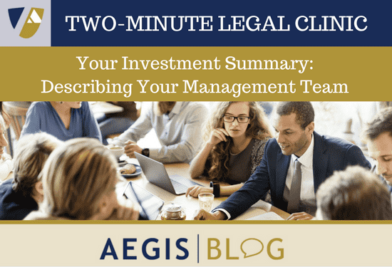 investment summary describing your management team aegis scott levine