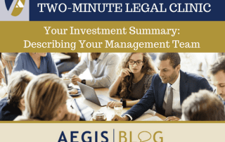 investment summary describing your management team aegis scott levine