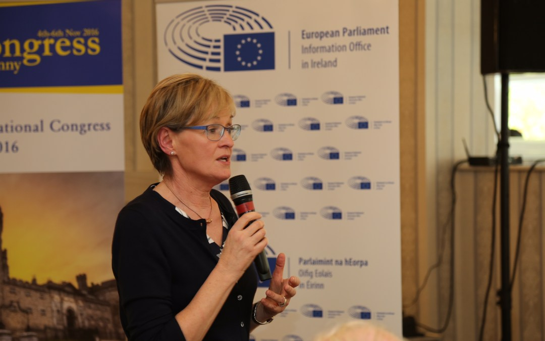 Brexit must not distract EU from core values