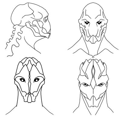 Bellatori Faces
