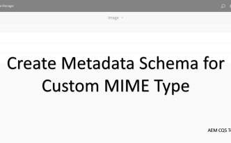 metadata schema form for custom mime types
