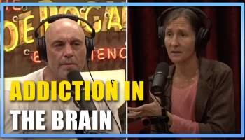 What Happens in the Brain During Addiction Joe Rogan w Anna Lembke