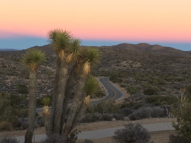 Joshua Tree National Park from Keys View at Sunset, January 6th 2015.