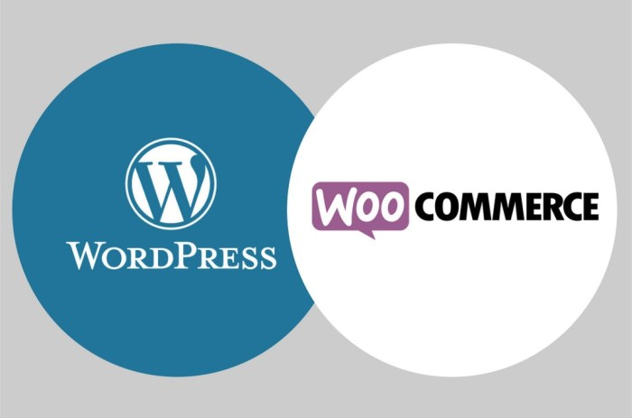 Formation WordPress et woocommerce