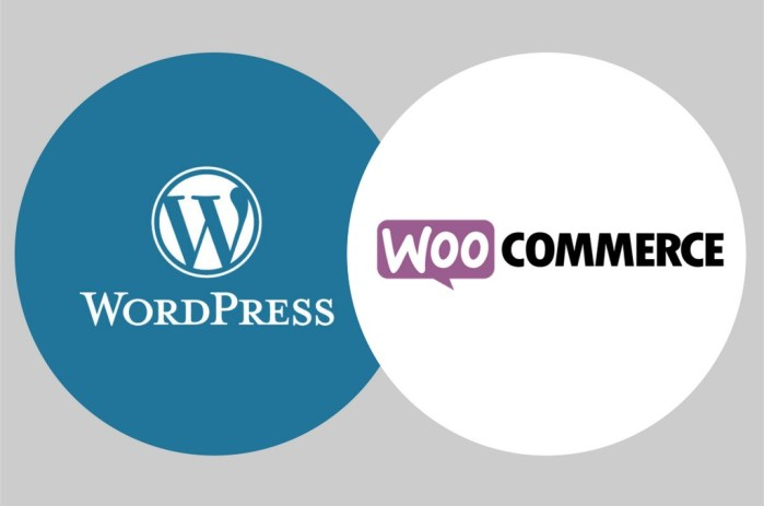 Formation Wordpress Woocommerce à Rodez Aveyron