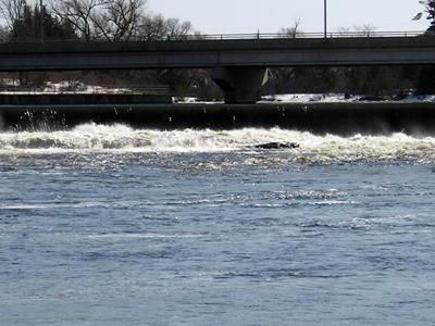Madawaska River and weir and bridge