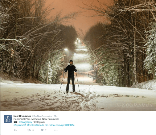 Evening skiing scene with snowy trees.
