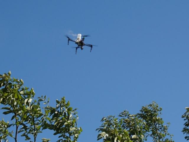 Droni per Agricoltura - Impollinazione Artificiale