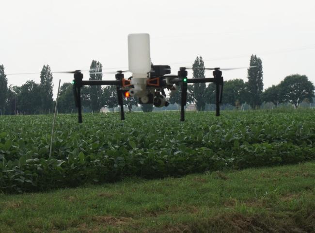 distribuzione insetti utili per agricoltura biologica