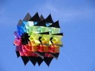 Black Opal, 37 CFK Stäbe. fliegt ohne Waage