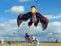 7. Festival der Riesendrachen