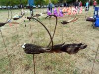 Samenkapseln werden mit einer Feder zu einem Vogel