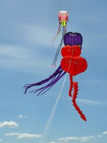 Herzen, Oktopus mit Giant Jelly Fish als Lifter