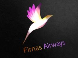 Firnas3